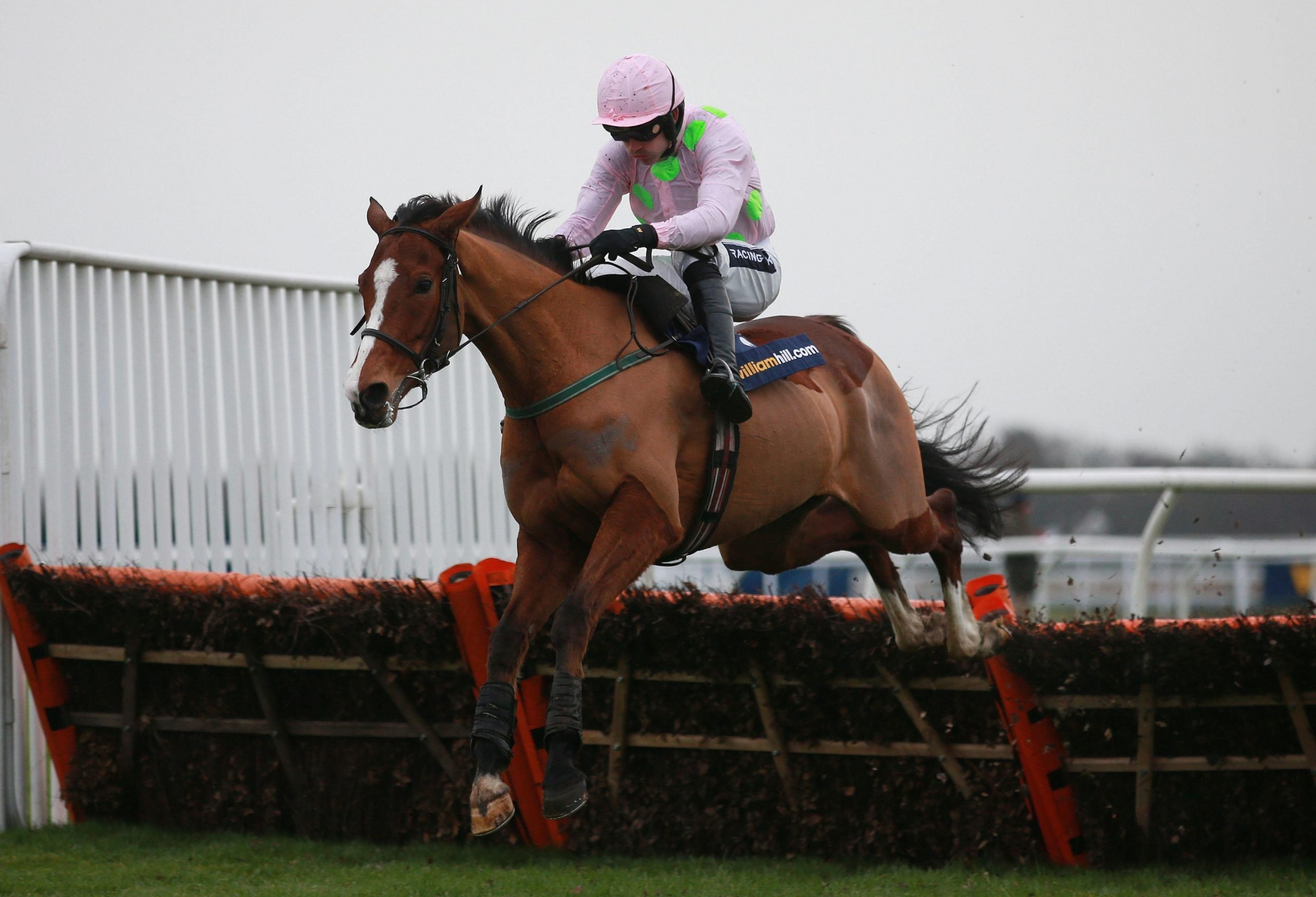 KEMPTON REWIND: Faugheen clears away with ease in the 2014 Christmas Hurdle